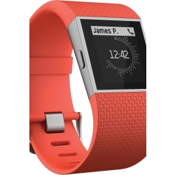 Unisex Fitbit Surge Bluetooth Fitness Superwatch Alarm Chronograph Watch FB501TAL