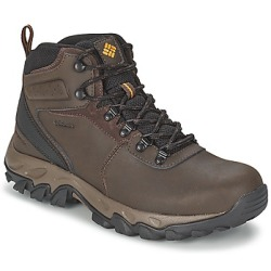 Columbia NEWTON RIDGE PLUS II WATERPROOF men's Walking Boots in Brown