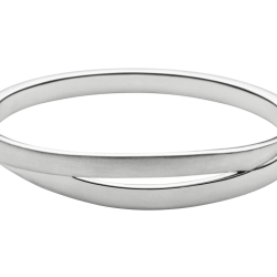 Skagen Elin Stainless Steel Hinged Bangle One Colour Women
